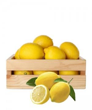 Limoni di Sicilia 6Kg