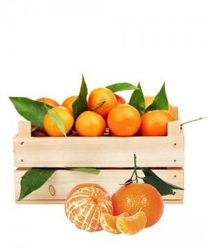 Mandarini di Sicilia 6Kg